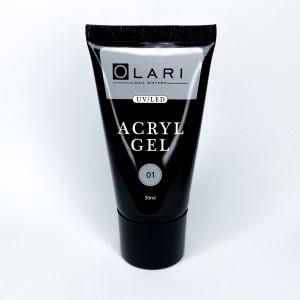 OLARI Акригель Acryl gel 01, 30 мл
